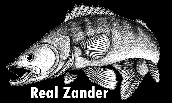 MIKATECH Real Shad 10 cm Real Zander Folie